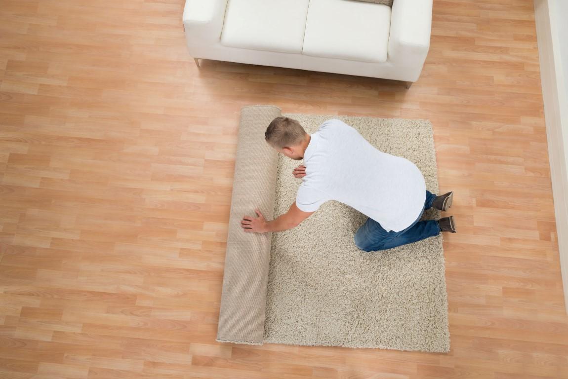שטיחים-421